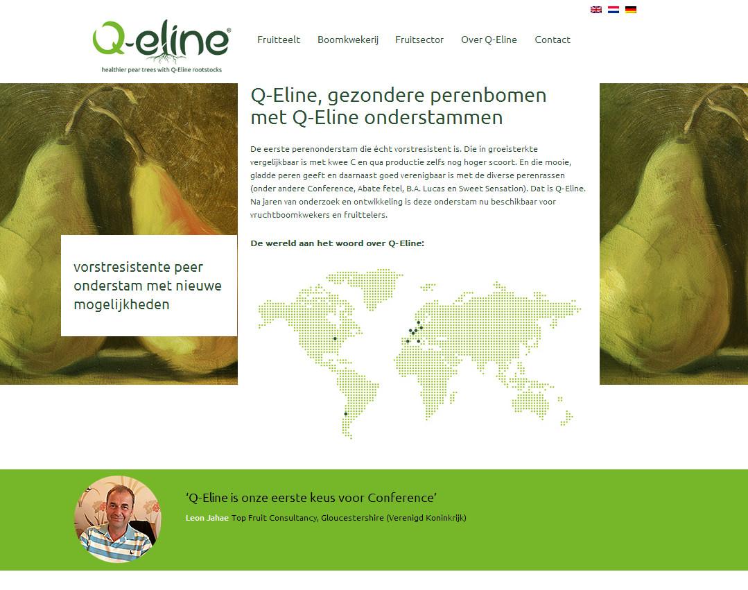 Q-Eline